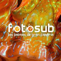 FOTOSUB 2017